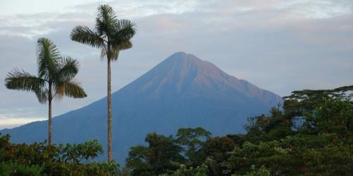 Výprava do Amazonie za Ayahuascou